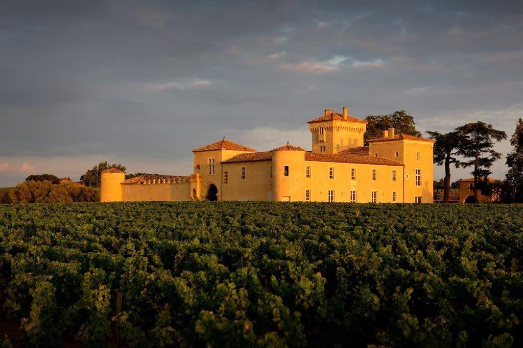 Les vignobles de Lafaurie-Peyraguey - Sauternes et le champignon magique