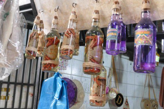 São Luís - Crabes dans bouteilles