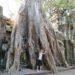 Visite de la Cité d'Angkor – Siem Reap
