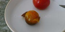 Monder des tomates