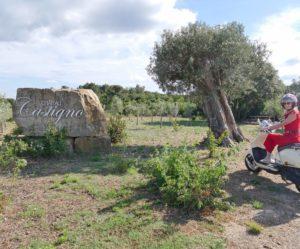 Le village de Castigno, l'Hôtel rose et «éclaté» d'Assignan