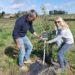 Adopter un chêne truffier et bénéficier de sa production !